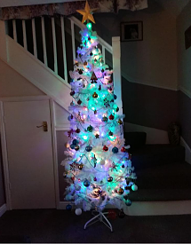 Show Us Your Tree-sstree.png