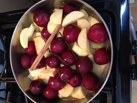 apple plum sauce-photo-1-10.jpg