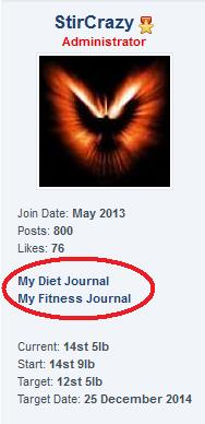 Name:  journals3.jpg